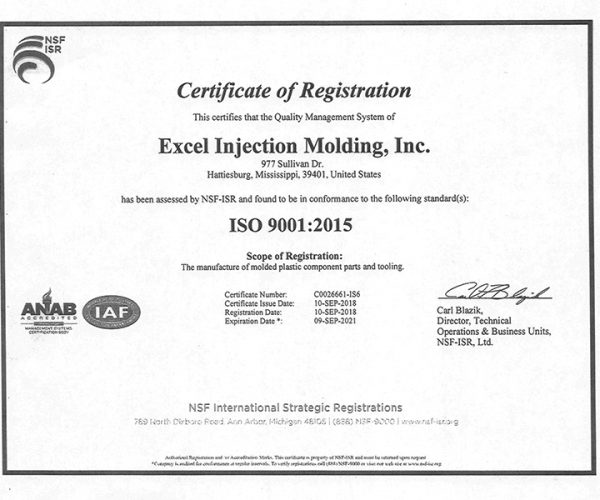 Excel Injection ISO certiicate small
